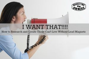 """Sheer Magnetism Researching and Creating """"I Want That!"""" Lead Magnets"""