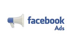 312 Facebook Ads