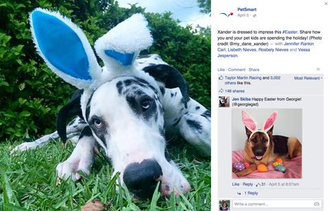 petsmart facebook