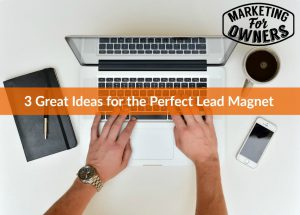 3 Great Ideas for the Perfect Lead Magnet #617